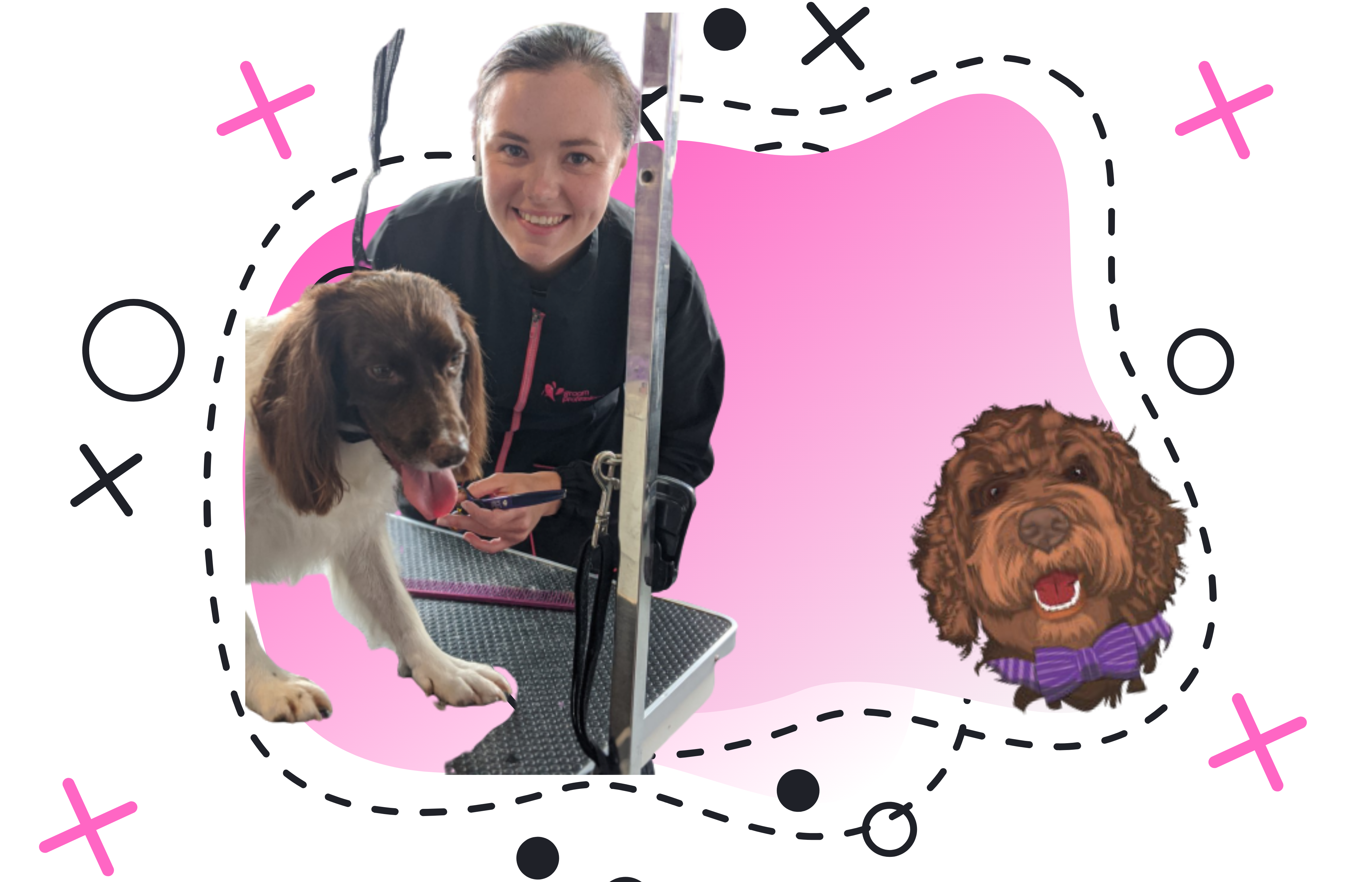 Chelsea Pink - The Canine Beauty Room